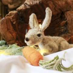 Starlite Puppets – The Rabbit and the Carrot